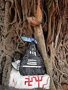 Sri Lanka. Ganesh at Habarana junction