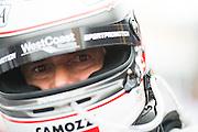 November 16-20, 2016: Macau Grand Prix.  Gianni MORBIDELLI, Civic