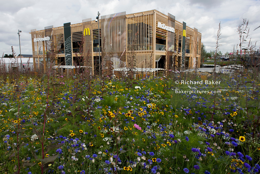 Set in English garden wildflowers is the world's biggest McDonald's in the Olympic Park during the London 2012 Olympics. For the past 40 years McDonalds has been the Official Restaurant Olympic Games. All official sponsors  they have paid $957 million to the IOC for the 19 days competition. Hundreds of food outlets at Olympic venues have been forced to take chips off the menu, because of a demand from sponsor McDonald's. Olympic chiefs banned all 800 food retailers at the 40 Games venues across Britain from dishing up chips because of 'sponsorship obligations. This land was transformed to become a 2.5 Sq Km sporting complex, once industrial businesses and now the venue of eight venues including the main arena, Aquatics Centre and Velodrome plus the athletes' Olympic Village. After the Olympics, the park is to be known as Queen Elizabeth Olympic Park.