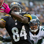 October 07, 2012:   Pittsburgh Steelers wide receiver Antonio Brown (84) attempts to catch the ball while defended by Philadelphia Eagles cornerback Nnamdi Asomugha (24) during the game between The Philadelphia Eagles and The Pittsburgh Steelers at Heinz Field in Pittsburgh, PA.  The Pittsburgh Steelers defeat the Philadelphia Eagles 16-14. (Credit Image: © Kostas Lymperopoulos/Cal Sport Media)