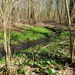 Natuurmonumenten in Limburg