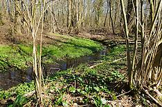 Grasbroek, Natuurmonumenten, Guttecoven, Limburg, Netherlands