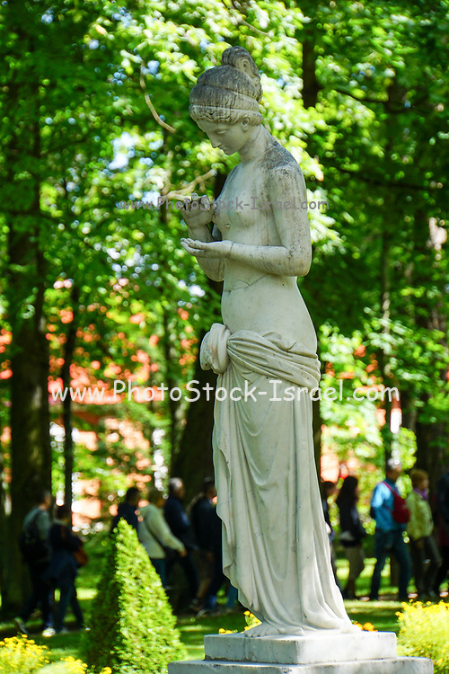 Peterhof Palace marble statue in the gardens in summer located near Saint Petersburg,