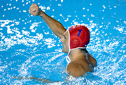 Goalkeeper of Serbia Slobodan Soro celebrates during the Men's  Waterpolo Final match between National teams of Serbia and Spain during the 13th FINA World Championships Roma 2009, on August 1, 2009, at the Stadio del Nuoto,  in Foro Italico, Rome, Italy. Serbia won after penalties shootout 14:13.  (Photo by Vid Ponikvar / Sportida)