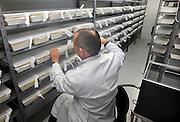 Nederland, Nijmegen, 21-1-2011Muggen in het dierenlaboratorium van het UMCN. Het aan de Radboud universiteit gelieerde bedrijf tropIQ health sciences doet eenzoektocht voor een medicijn tegen malaria, een tropische ziekte die vooral in arme, derdewereld landen slachtoffers maakt.Foto: Flip Franssen