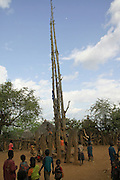 Africa, Ethiopia, Konso tribe, The Generation Pole