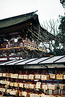 Dazaifu Shrine in Kyushu, Japan.