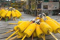 Yellow lobster buoys and lobster traps on dock Bristol Maine USA