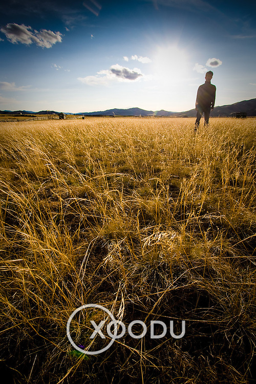 Silhouette of person in field of long grass (, Mongolia - Sep. 2008) (Image ID: 080909-1818011a)