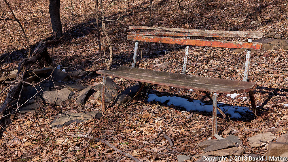 Lonely Bench. Image taken with a Leica CL camera and 18-56 mm lens