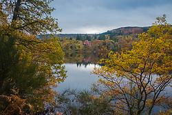 Loch Fiskally Autumnal Reflections looking towards Fonab Castle Hotel.<br /> Neil Bain   EEm 4th November 2017