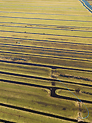 Nederland, Zuid-Holland, Gemeente Vlist, 20-02-2012; Polder Schoonouwen met Achterwetering, de langwerpige verkaveling is ontstaan door het ontginnen van het veen vanuit de dorpen langs de nabijgelegen rivier de Lek. Boer is bezig met het injecteren van mest in het weiland, de drijfmest wordt door middel van een sleepslangbemester aangevoerd van de boerderij op grote afstand. .Polder with watercourse, the land division (in lots) originates from the reclamation of peat bog starting from the villages along the river Lek .Farmer is busy injecting manure in the grassland, the liquid manure comes from the farm at great distance..luchtfoto (toeslag), aerial photo (additional fee required);.copyright foto/photo Siebe Swar