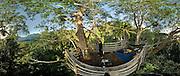 360-degree panoramic view from a treetop platform behind Masihulan village, north Seram. Take a spin inside this image at http://www.cahayafoto.com/download/MoritePano/index.html