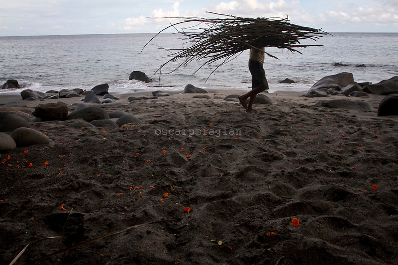 Lamalera villagers brought a bundle of dry wood as fuel for cooking, Residents in the lamalera village, Indonesia hunting sperm whales to provide meals for the entire village and part of the lembata island where the village is located..
