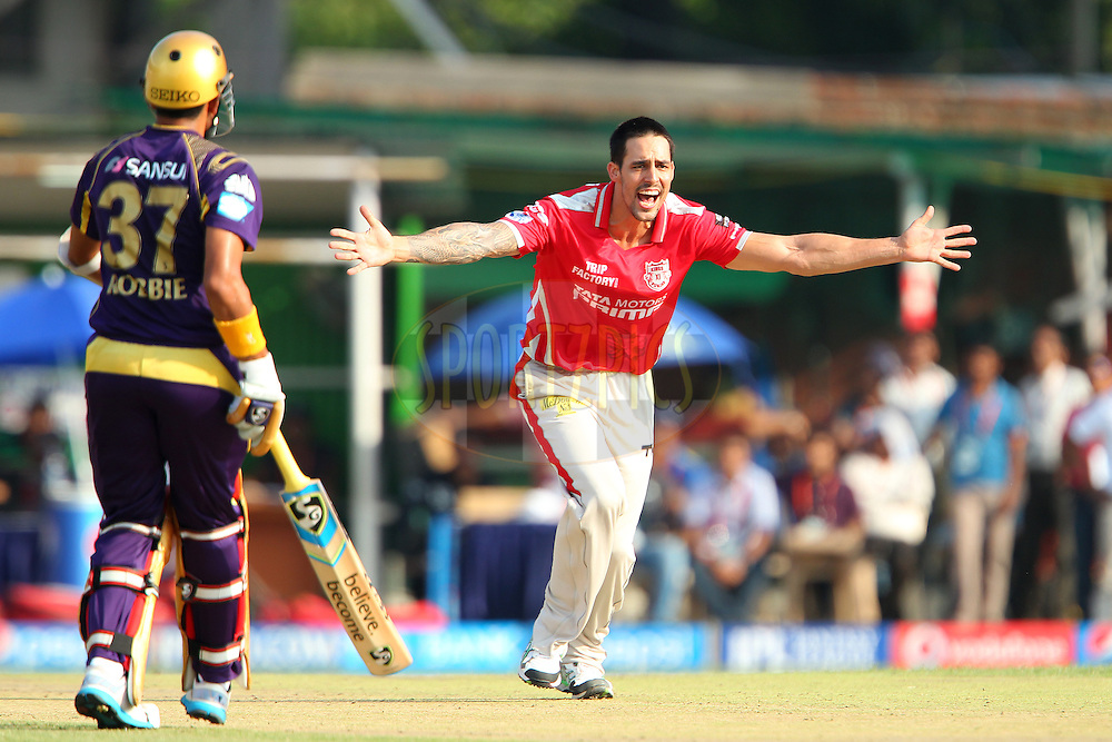 Mitchell Johnson of the Kings X1 Punjab appeals for the wicket of Gautam Gambhir captain of the Kolkata Knight Riders as Robin Uthappa of the Kolkata Knight Riders looks on during the first qualifier match (QF1) of the Pepsi Indian Premier League Season 2014 between the Kings XI Punjab and the Kolkata Knight Riders held at the Eden Gardens Cricket Stadium, Kolkata, India on the 28th May  2014<br /> <br /> Photo by Ron Gaunt / IPL / SPORTZPICS<br /> <br /> <br /> <br /> Image use subject to terms and conditions which can be found here:  http://sportzpics.photoshelter.com/gallery/Pepsi-IPL-Image-terms-and-conditions/G00004VW1IVJ.gB0/C0000TScjhBM6ikg