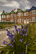 Union Jack flag and brick homes, bluebells, Stanley, capital of Falkland Islands.