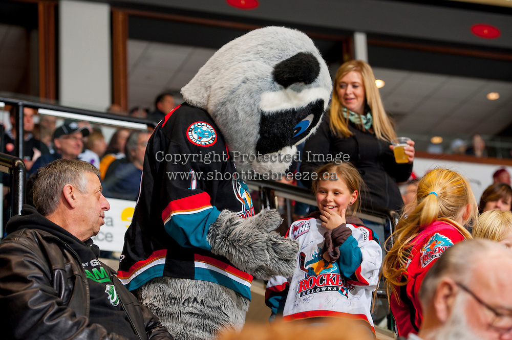 KELOWNA, CANADA -FEBRUARY 5: Rocky Racoon, the mascot of the Kelowna Rockets, engages fans during the time out against the Red Deer Rebels on February 5, 2014 at Prospera Place in Kelowna, British Columbia, Canada.   (Photo by Marissa Baecker/Getty Images)  *** Local Caption *** Rocky Racoon;