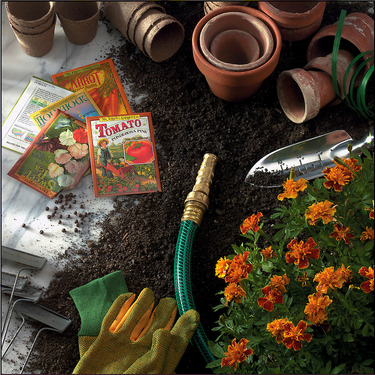 A gardening still life with clay pots, seed packets, gloves and mums
