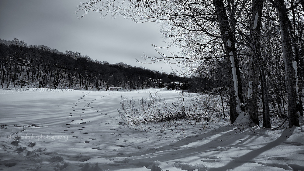 Winter field with footprints in Tibbets Brook Park; Yonkers, NY