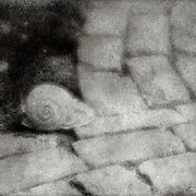 A still life of a stone snail starting to cross a cobblestone path. This image was created using the Bromoil process.