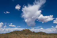 Afternoon clouds begin to build up over the Mokala National Park, Mokala National Park, Northern Cape, South Africa