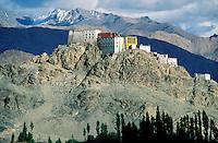 Inde - Province du Jammu Cachemire -  Ladakh - Monastère bouddhiste de Tiksey