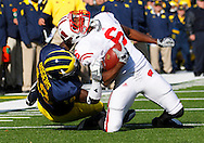 November 20, 2010 NCAA Football: Wisconsin at Michigan