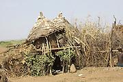 Africa, Ethiopia, Omo Valley, Daasanach dwelling