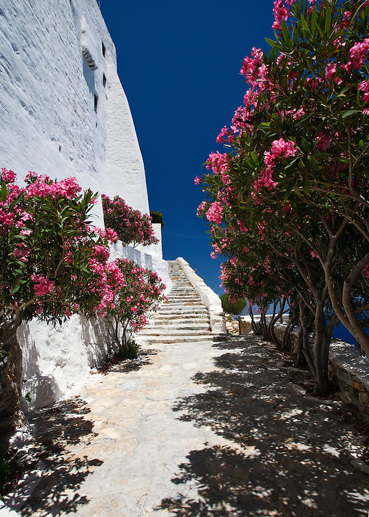 Bougainvilla lined path to spectacular hozoviotissa monastery, Amorgos, Cyclades, Greece