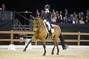 Saskia Maertens - Legend of Loxley<br /> Indoor Brabant 2016<br /> © DigiShots