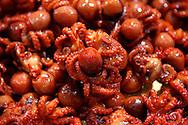 Baby Octopus at Nishiki-koji street market in Kyoto. Japan 2013