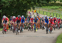 A view of the peloton as they approach Staple Lane in the Prudential RideLondon-Surrey Classic 30/07/2017<br /> <br /> Photo: Jon Buckle/Silverhub for Prudential RideLondon<br /> <br /> Prudential RideLondon is the world's greatest festival of cycling, involving 100,000+ cyclists – from Olympic champions to a free family fun ride - riding in events over closed roads in London and Surrey over the weekend of 28th to 30th July 2017. <br /> <br /> See www.PrudentialRideLondon.co.uk for more.<br /> <br /> For further information: media@londonmarathonevents.co.uk