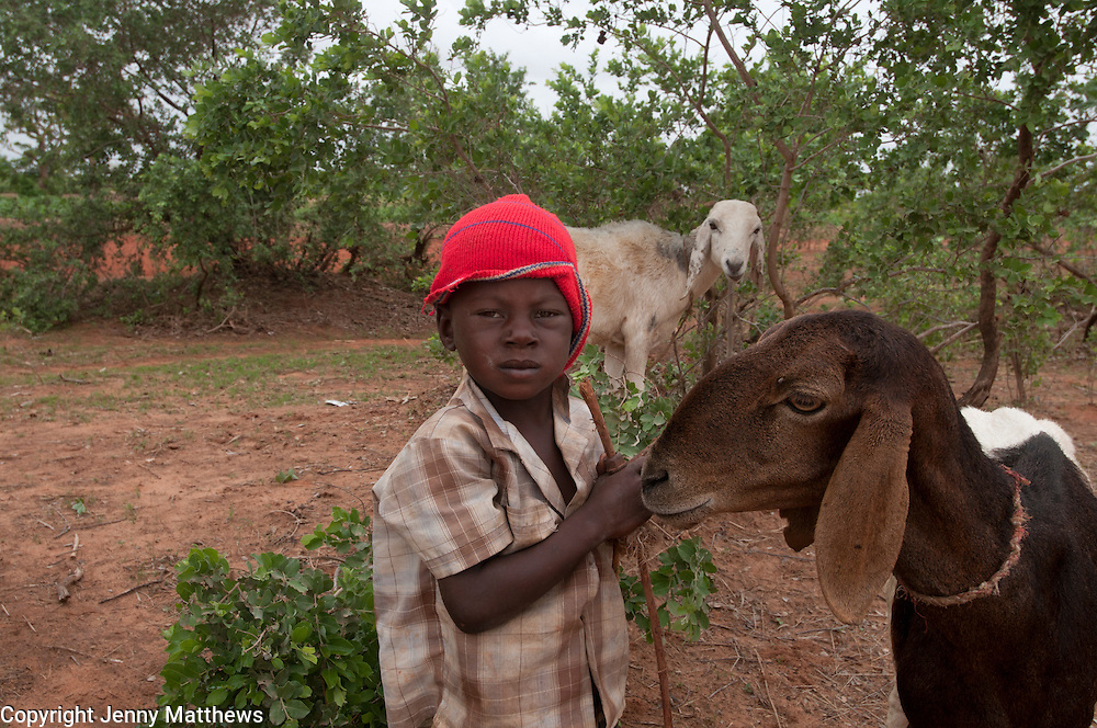 Niger  July 2010<br /> En route to Niki Beri<br /> Four year old Yanoussa Mamane looking after the goats with his brother.