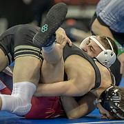 WIAA State Wrestling Tournament