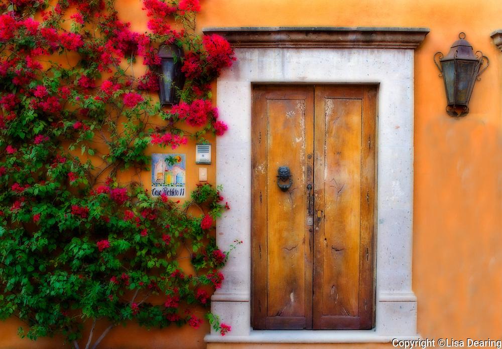 Flowers Blooming in Doorway, San Miguel de Allende, Mexico