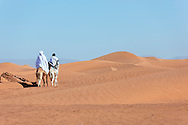 Two nomads riding on their camel into the desert, M'hamid, Morocco.