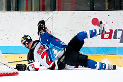 02.11.2012, Hostan Arena, Znojmo, CZE, EBEL, HC Orli Znojmo vs SAPA Fehervar, 18. Runde, im Bild Brian Bickel (Znojmo #29) Peter Hetenyi (Fehérvár #2) // during the Erste Bank Icehockey League 18nd round match betweeen HC Orli Znojmo and SAPA Fehervar at the Hostan Arena, Znojmo, Czech Republic on 2012/11/02. EXPA Pictures © 2012, PhotoCredit: EXPA/ Rostislav Pfeffer