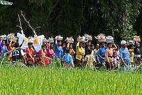Indonesie, Bali, Ceremonie de cremation dans les environs de Ubud // Indonesia, Bali, Creamation ceremony, Ubud area