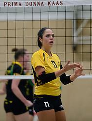 25-10-2014 NED: Prima Donna Kaas Huizen - SV Dynamo Apeldoorn, Huizen<br /> Apeldoorn pakt de drie punten door Huizen met 3-0 te verslaan / Sterre van Doorn