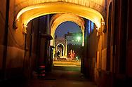 """France. Lyon . The covered passages create the charm of Lyon. in the Menestrier Passage, the lighting allow us to appreciate the porches of two ancient chapels, that of the """"gentlemen"""" and that of the """"artisans"""". Les passages couverts sont les grands charmes de Lyon, dans le passage Menestrier, l'eclairage permet d'apprecier les porches de deux anciennes chapelles, celle des messieurs et celle des artisansR00063 22L930920c P0000217"""