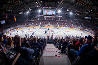 REGINA, SK - MAY 23: Full arena at the Brandt Centre on May 23, 2018 in Regina, Canada. (Photo by Marissa Baecker/CHL Images)