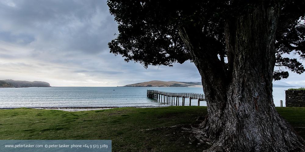 Omapere wharf Hokianga harbour, Northland, New Zealand
