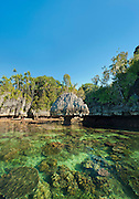 Karst mushroom rock and table corals in clear, shallow waters, Suranggan, Triton Bay, Papua