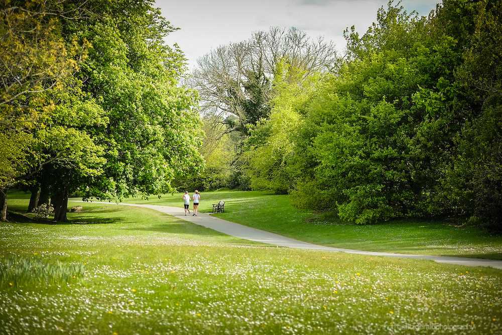 Dublin, Ireland: Two joggers jog through the peaceful and beautiful Marley Park on the outskirts of Dublin City
