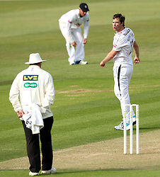 Hampshire's James Tomlinson half appeals for an LBW - Photo mandatory by-line: Robbie Stephenson/JMP - Mobile: 07966 386802 - 21/06/2015 - SPORT - Cricket - Southampton - The Ageas Bowl - Hampshire v Somerset - County Championship Division One