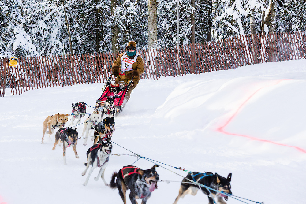 Musher James Wheeler competing in the Fur Rendezvous World Sled Dog Championships at Goose Lake Park in Anchorage in Southcentral Alaska. Winter. Afternoon.