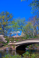 The Bow Bridge, Central Park, New York, New York USA.