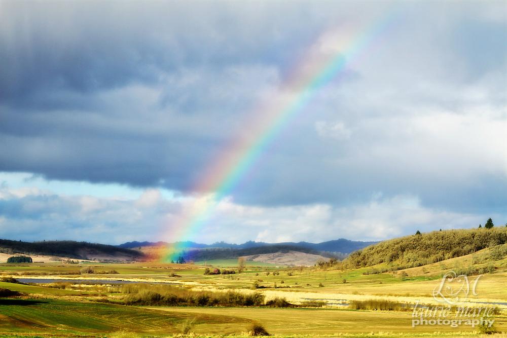 Rainbow in green Willamette Valley