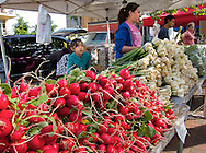 .Vegtables for sale at the farmers market. .The Dane County Farmers Market is held Saturday mornings from early April through early November on the Capitol Square in Madison, Wisconsin.