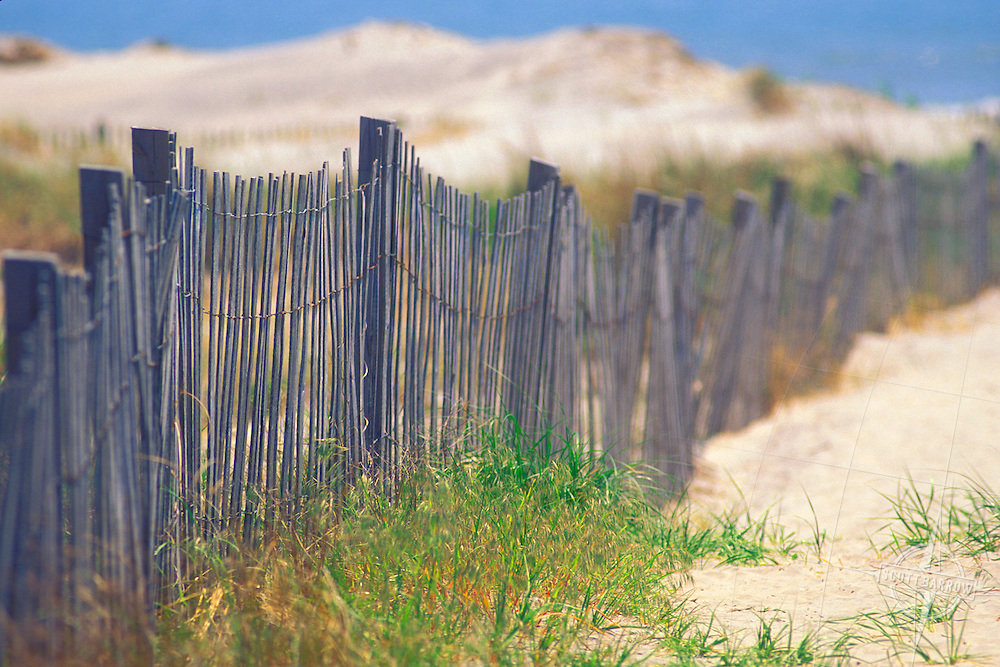 Sand Dunes with Dune Fencing